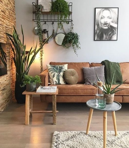 indoor plants 2019 fall home decor