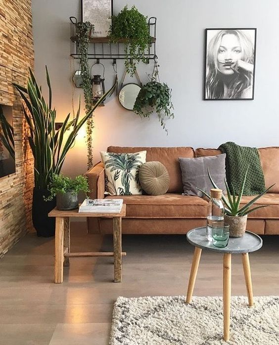 indoor plants 2019 fall home decor