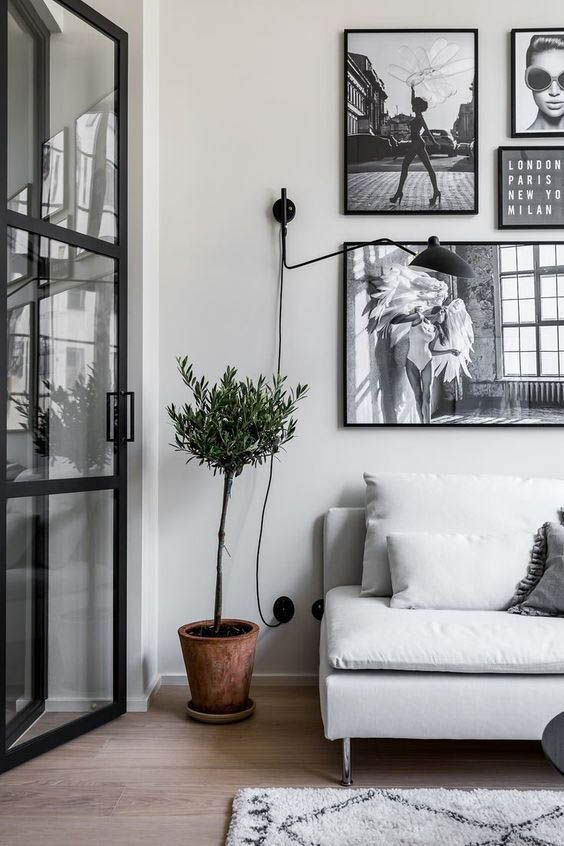 indoor plant and photo frames