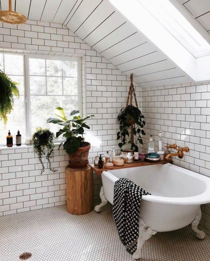 The 10 Best Indoor Plants for Your Bathroom