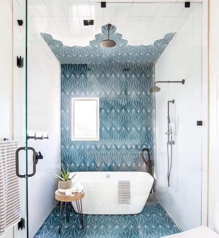 indoor plant in blue and white bathroom