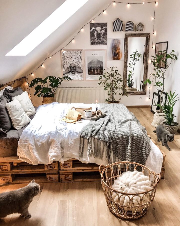 pallet bed and to cats in a bedroom