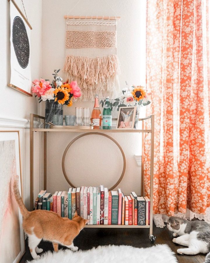 coral curtain and two cats create an instagram ready home
