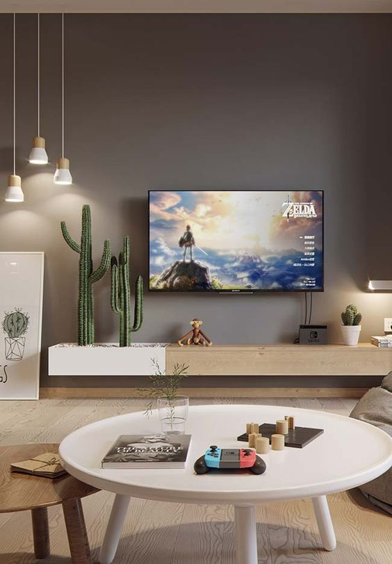 a TV with a cactus near it