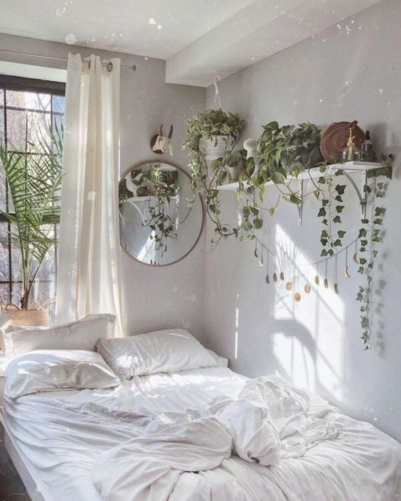 indoor plants in small bedroom