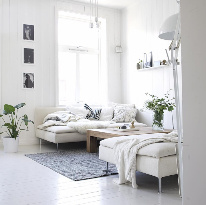 white living room with pillows and indoor plants