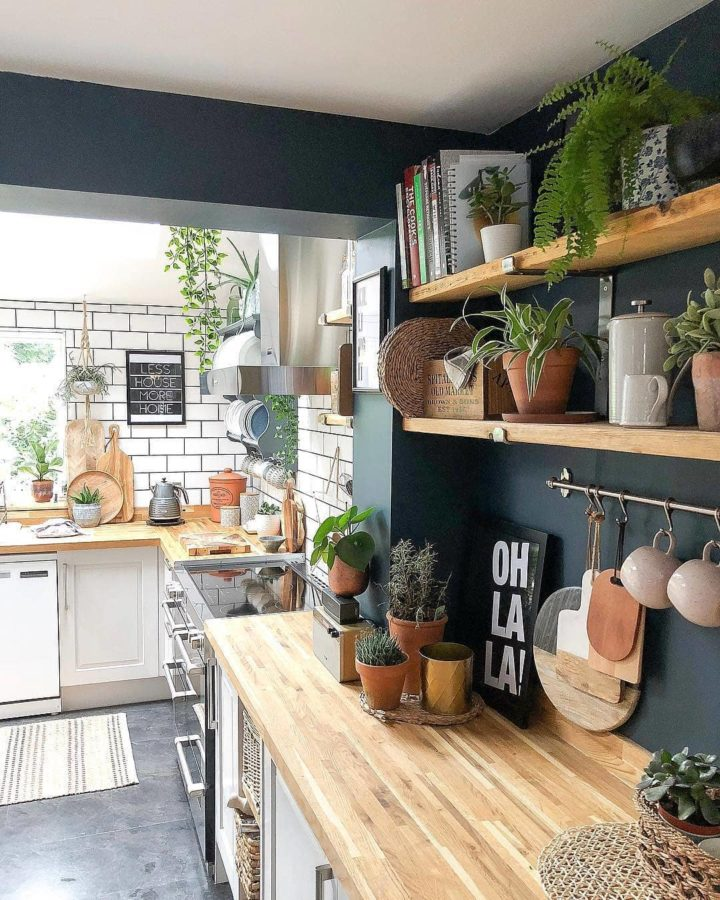 Kitchen On a Budget with open shelves and navy walls