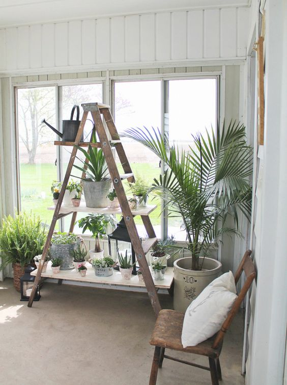 DIY home project with ladder shelves