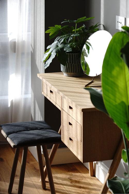 Beautiful living room plants