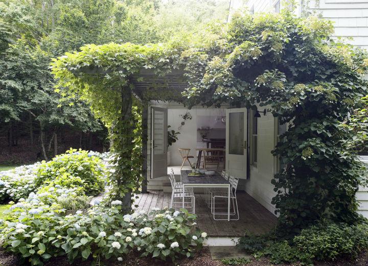 amazing small garden