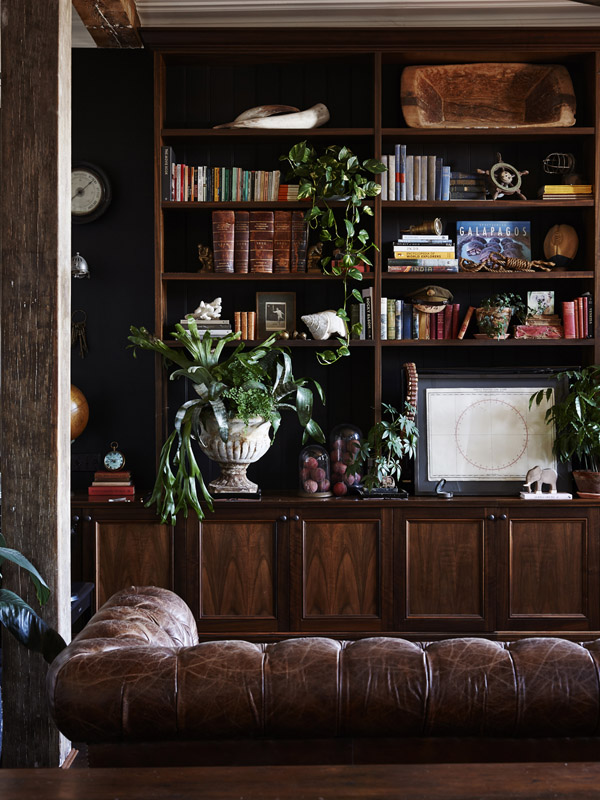 living room with leather chesterfield couch and Custom built dark timber bookshelves