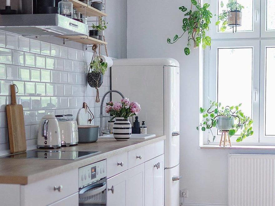 simple white kitchen with wood floor hanging plants and cream smeg fridge and appliances
