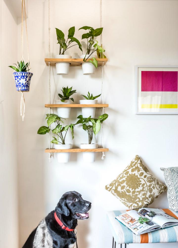 urban boho bedroom wall decor with small plants