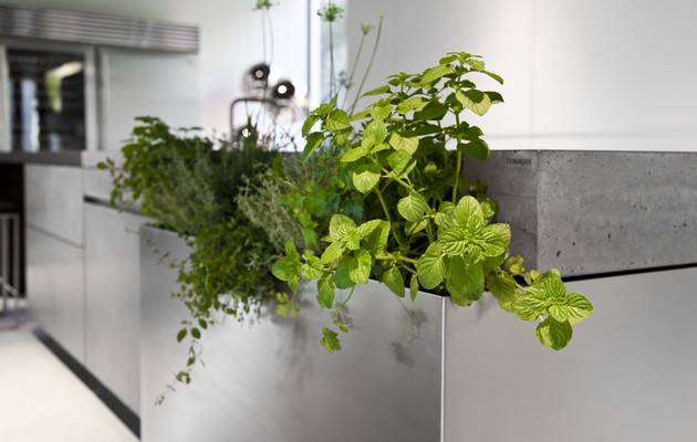 Concrete eco Kitchen 3 by Martin Steininger